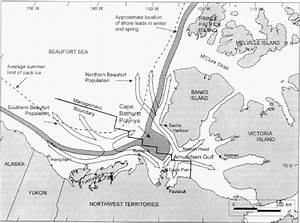 Map Of The Beaufort Sea Indicating The Distribution And