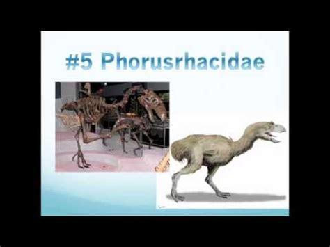 Top 10 Weirdest Prehistoric Animals YouTube