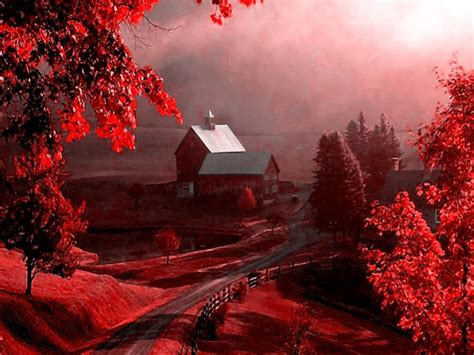 Red Nature Wallpaper  Good Days