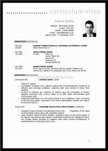 Resume Profile Summary Exles by Exle Of Cv Profile Summary Information Technology Specialist Resume Profile Summary Best Hair