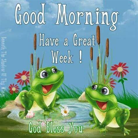 Pin by Mary Miller on Monday morning   Cute frogs, Frog ...