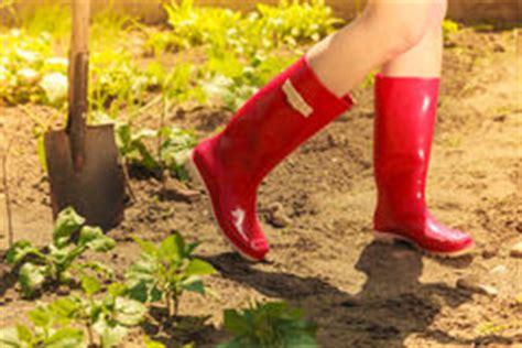 Frauenbeine, Die Rote Gummistiefel Im Garten Tragen