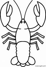 Lobster Coloring Drawing Simple Coloringall Printable Cartoon Any Lobsters Rock sketch template