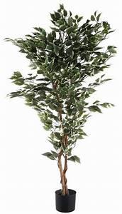 Ficus Benjamini Kaufen : kunstpflanze ficus benjamini online kaufen otto ~ A.2002-acura-tl-radio.info Haus und Dekorationen