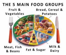 Five Main Food Groups