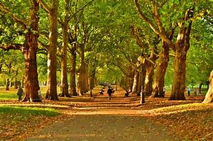 Parks In London : seven calming ways to really slow down in london things to do in london ~ Yasmunasinghe.com Haus und Dekorationen