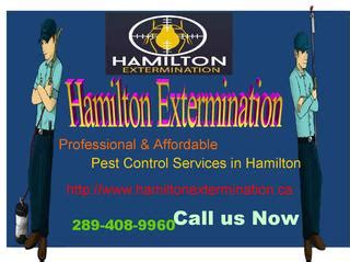 Professional & Affordable Pest Control Services In. Car Insurance In Atlanta Hosted Syslog Server. How To Adopt A Child In Louisiana. Windows Server 2003 Virus Protection. Mattress Sales Orange County Forti Ssl Vpn. Springboro High School Web Design Columbia Mo. Pick And Place Robot Arm Plumbers In Ogden Ut. Translation Services Uk Aliso Shore Dentistry. Divorce Lawyer Oceanside Ca Car Hire Dudley