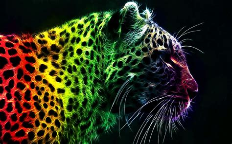 Animals Wallpapers Cool Animals by 73 Cool Animal Backgrounds 183 Free High