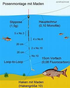 6 6 En Cm : angeln mit maden angeln und outdoor ~ Dailycaller-alerts.com Idées de Décoration