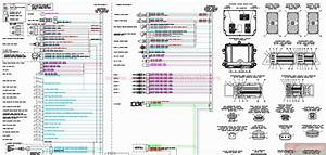 29 Cummins Isx Ecm Wiring Diagram