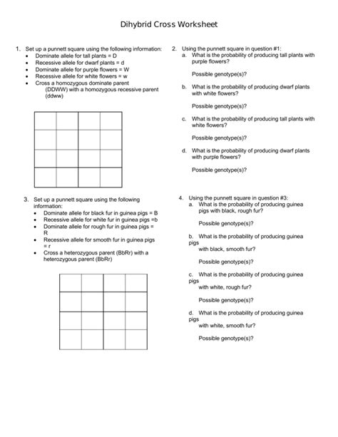 dihybrid cross worksheet answer key worksheets for all