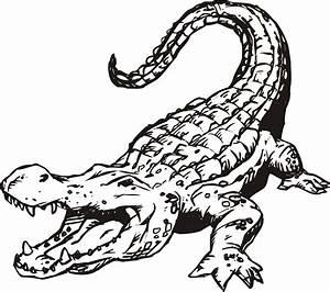 Alligator Clip Art Free - ClipArt Best - ClipArt Best