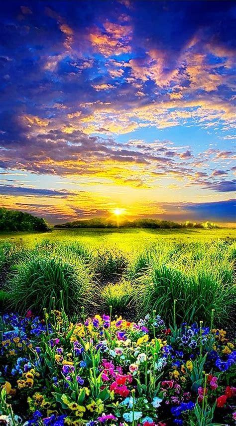 Stunning Sunrise Photos