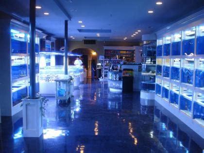 aquarium store for sale aquarium stores ct aquariums ct clean aquariums store 2017