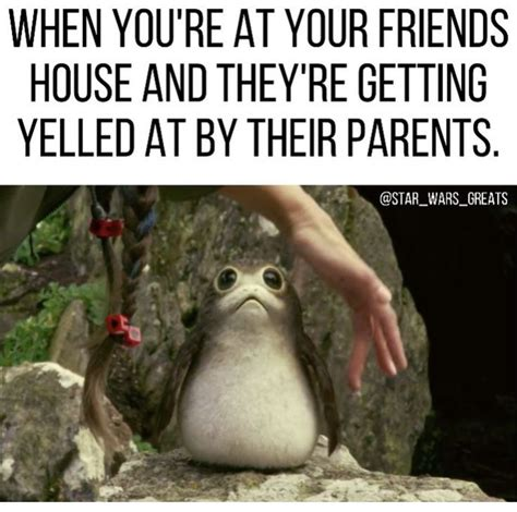 Porg Memes - 82 best porgs images on pinterest star wars starwars and funny stuff