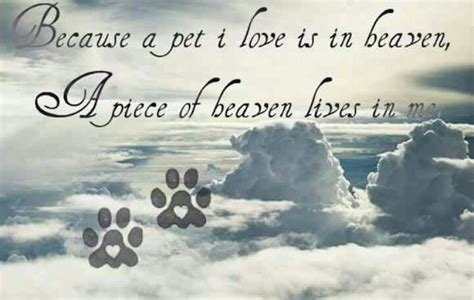 All Dogs Go To Heaven Quotes