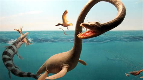 Why The Aquatic Dinosaur Theory Is Damaging To Science