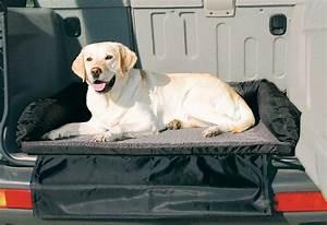 Auto Als Bett : hunde bett auto bett online kaufen otto ~ Markanthonyermac.com Haus und Dekorationen