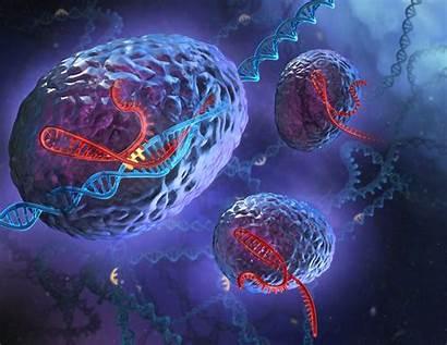 Crispr Gene Pharma Editing Biotech