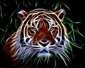 Tiger Abstact Art Photograph by Steve McKinzie