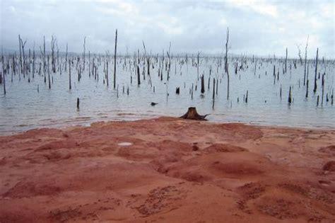 Stuwmeer | Foto | Coschappen in Suriname