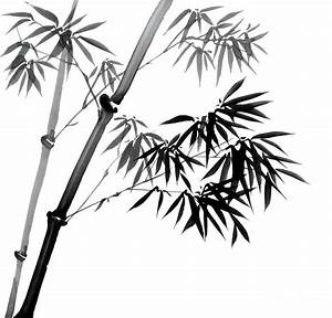 Chinese Ink Painting Of Bamboo Canvas Print / Canvas Art ...