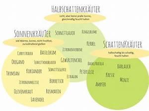 Blumen Für Schattigen Balkon : 25 beste idee n over kr uterbeet anlegen op pinterest kr uter anpflanzen eetbare tuin en ~ Orissabook.com Haus und Dekorationen