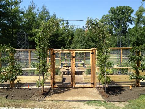 pictures of garden fences vegetable garden fencing dirt simple