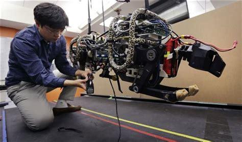 mit was mäuse fangen mit engineers high hopes for cheetah robot
