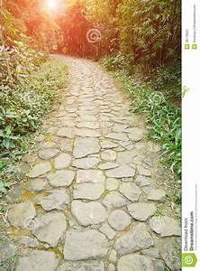Curving, Stone, Pavement, Footpath, Stock, Photo