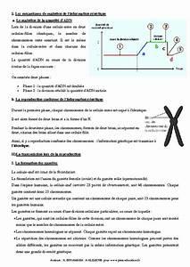 Transmission De L U0026 39 Information G U00e9n U00e9tique  U2013 3 U00e8me  U2013 Cours