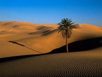 Desert Resolution Wallpapers Awesome