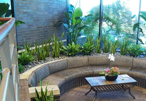 interior plant service ask for a free northern ky interior planr services