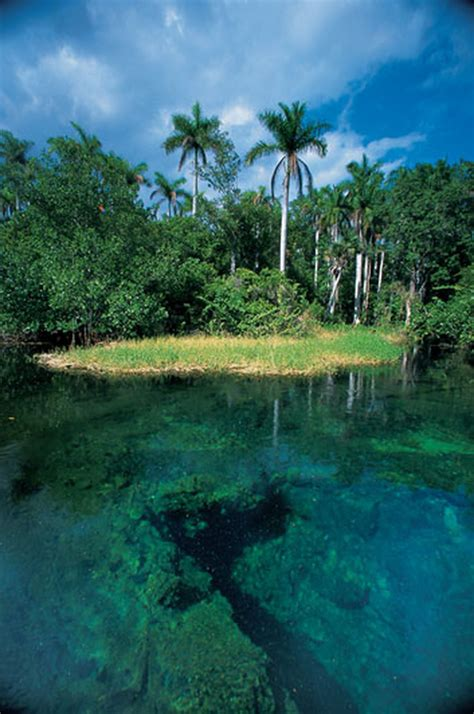 The Nature Of Cuba  Travel Smithsonian