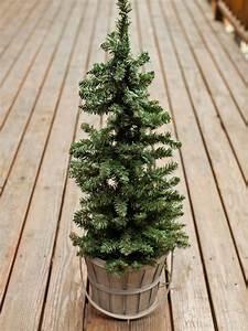 Outdoor, Holiday, Decorating, Idea, Mini, Christmas, Tree