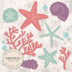 Premium Seashells Clipart & Vector Set Vintage by ...
