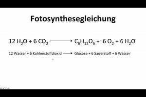 Wirkungsgrad Berechnen Formel : photosynthese die formel k nnten sie so erkl ren ~ Themetempest.com Abrechnung