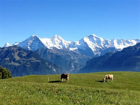 Interlaken Top Tours Pure Switzerland Luxury Travel