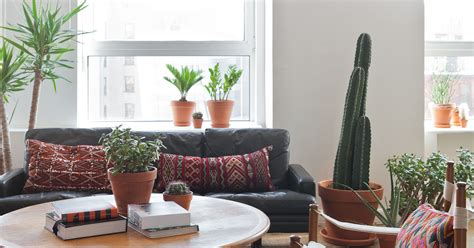 Trendy Home Decorating Ideas: Popular Interior Styling Tips