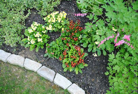 Gartenumrandung Aus Stein by The Easiest Garden Edging Ideas That Are Budget Friendly