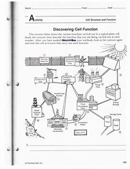Best Analogies Worksheets - ideas and images on Bing | Find what you ...