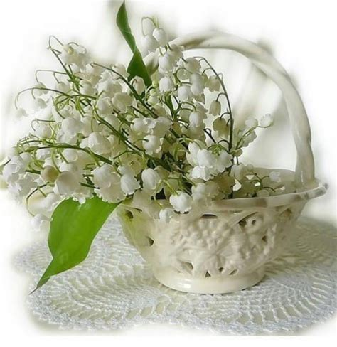 Photolily Of The Valley Lily Of The Valley Spring Flowering Bulbs Valley Flowers