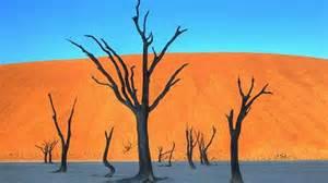 ナミビア:ナミビア、ナビブ砂漠で撮影 ...