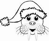 Walrus Santa Cartoon Coloring Hat Head Christmas Clip Clipart Line Brown Pages Svg Cliparts Sheet Colouring Clipartpanda Library Drawings Hulk sketch template