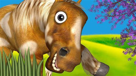 cavalo fazenda meu zenon