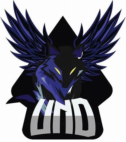 Liquipedia Overwatch Undefined Team Und