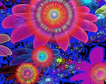 Psychedelic Flowers Trippy Gifs