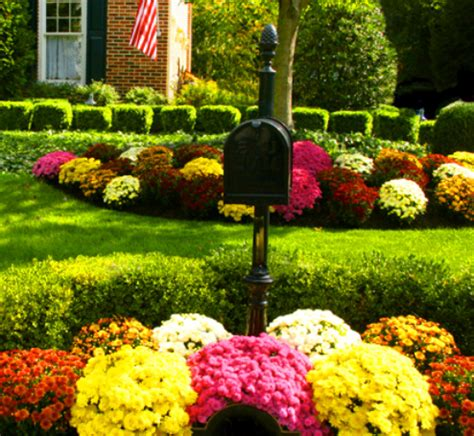fall garden flowers flower garden pictures pictures of