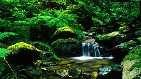 landscape themes beautiful landscapes wallpapers wallpaper cave