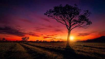 Scenery Sunset Wallpapers 1080 1920 1280 1440